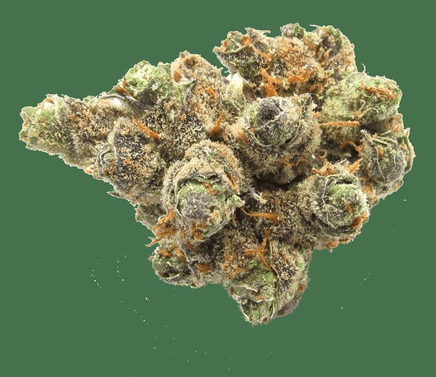 Atlanta Weed