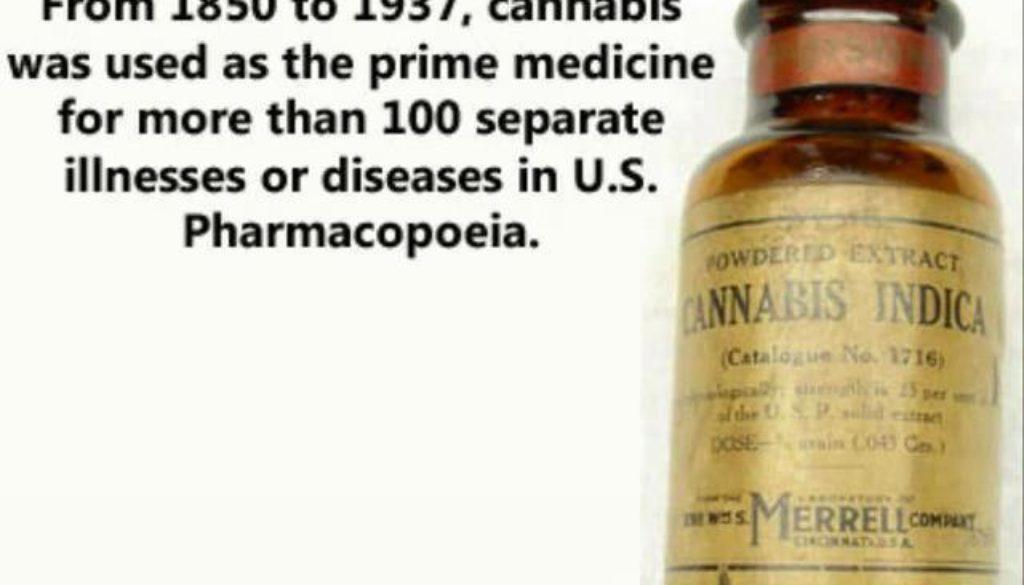 medicinal weed tincture cbd