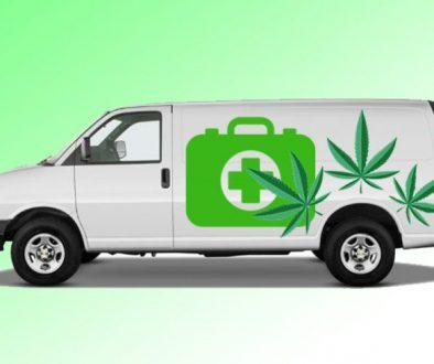 Cannabis-Van